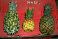 Artificial Pineapples