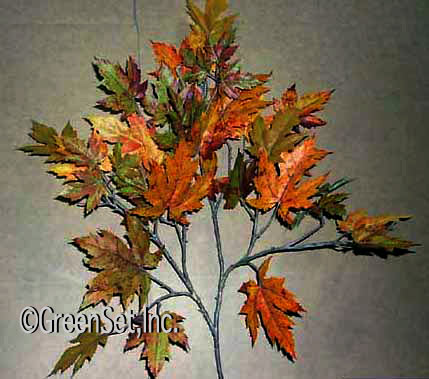 Rock Maple Fall Spray