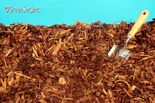Medium Bark Chips - Close-up