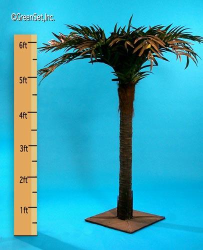 Areca Stalk Palm